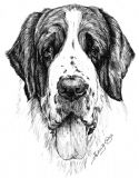 St Bernard Puppy Receipt Book (1) (7)